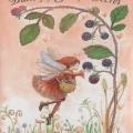 Butterfly Fairy's Secret
